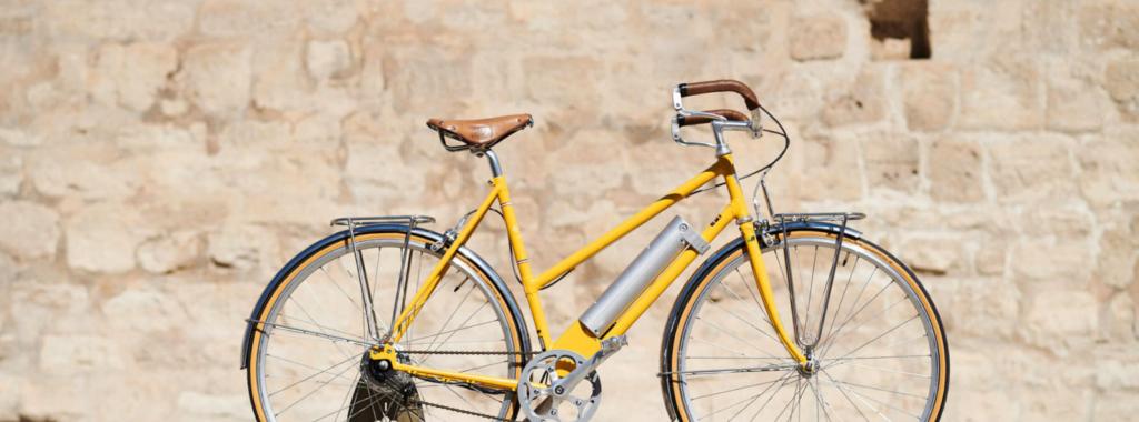 Cavale vélo